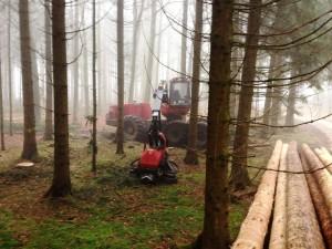Forstarbeiten Teil1002